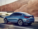 BMW Concept X4 (F26) 2013 pictures