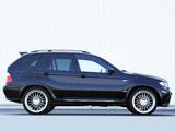 Hamann BMW X5 (E53) 2003–07 images