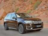 BMW X5 xDrive50i (F15) 2013 images