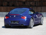 G-Power BMW Z4 M (E85) 2008 pictures