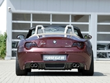 Rieger BMW Z4 (E85) 2010 photos