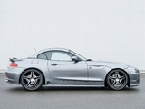 Hamann BMW Z4 Roadster (E89) 2010 pictures