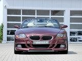 Rieger BMW Z4 (E85) 2010 wallpapers