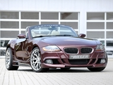 Images of Rieger BMW Z4 (E85) 2010