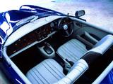 Bristol Blenheim Roadster 2002 photos