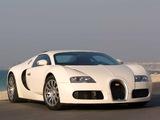 Bugatti Veyron 2005–11 pictures