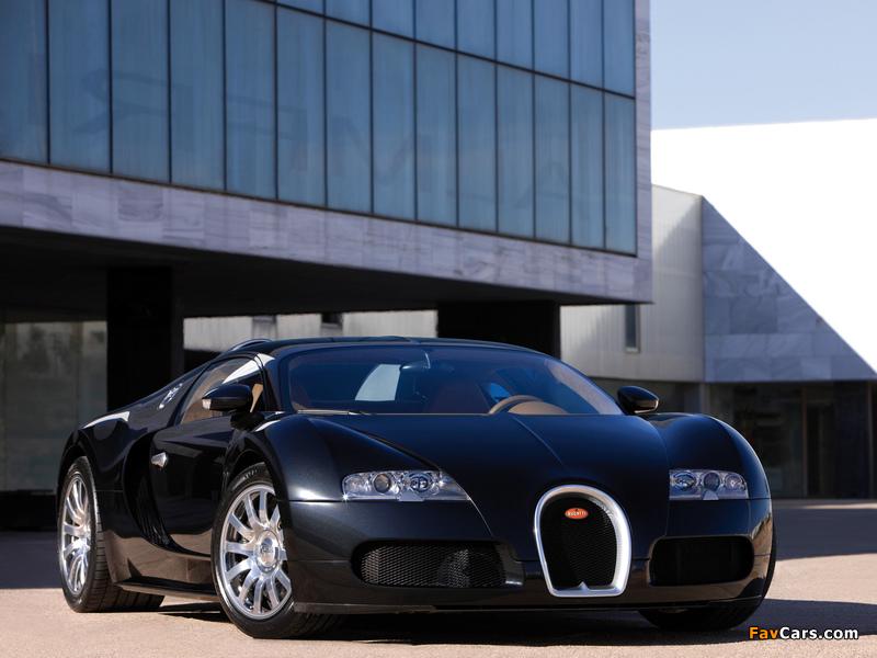 Bugatti Veyron 2005–11 pictures (800 x 600)