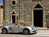 Bugatti Veyron Grand Sport Roadster 2008 photos
