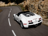 Bugatti Veyron Grand Sport Roadster 2008 pictures