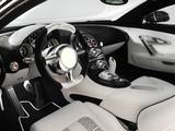 Mansory Bugatti Veyron Linea Vincero 2009 photos