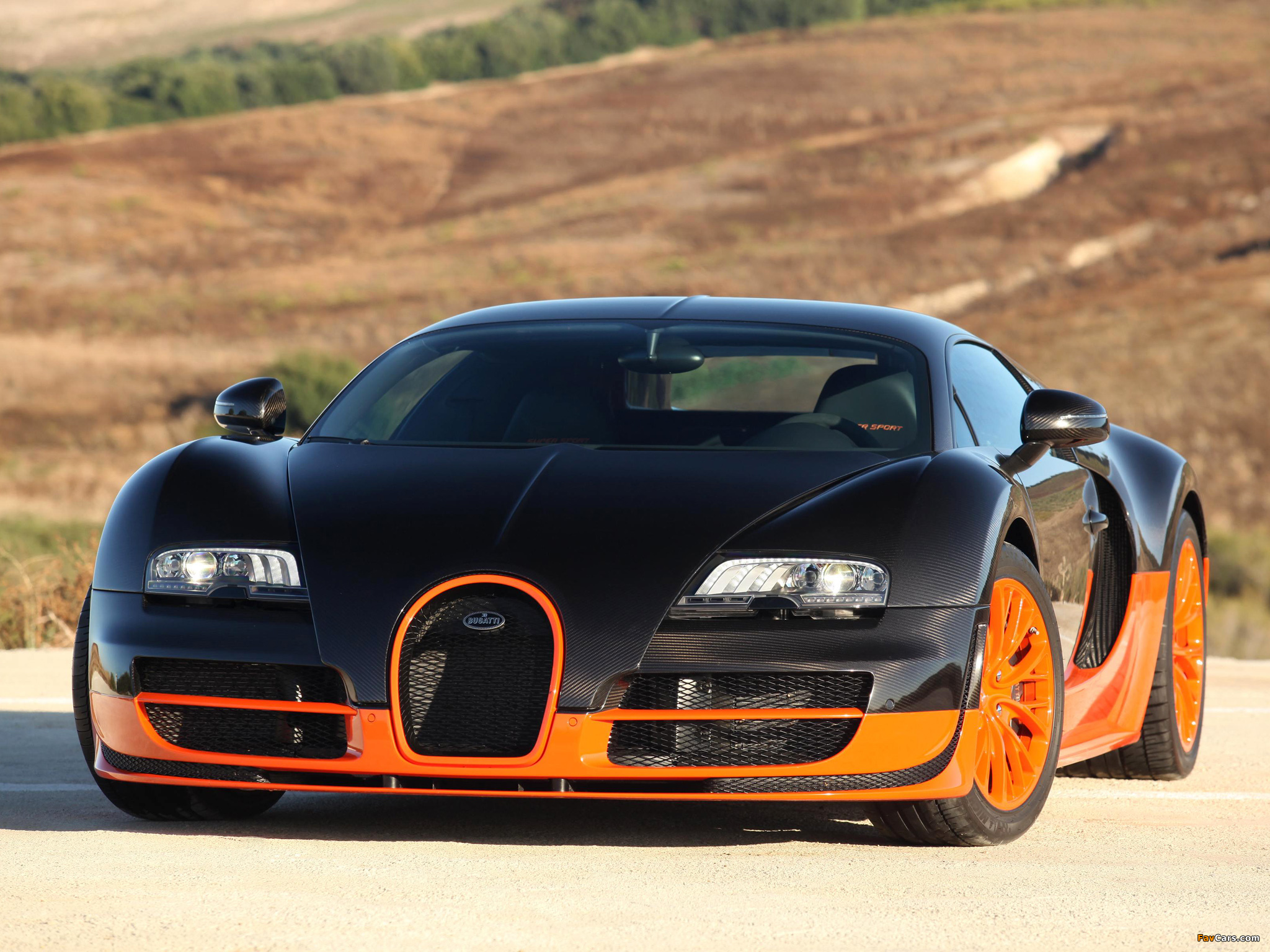 Bugatti Veyron 16 4 Super Sport 2010 Images 2048x1536