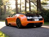 Bugatti Veyron Grand Sport Roadster Vitesse US-spec 2012 pictures