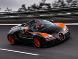 Bugatti Veyron Grand Sport Roadster Vitesse WRC Edition 2013 pictures