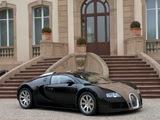Images of Bugatti Veyron Fbg Par Hermes 2008
