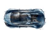 Images of Cketch Bugatti Veyron Grand Sport Roadster Vitesse JP Wimille 2013