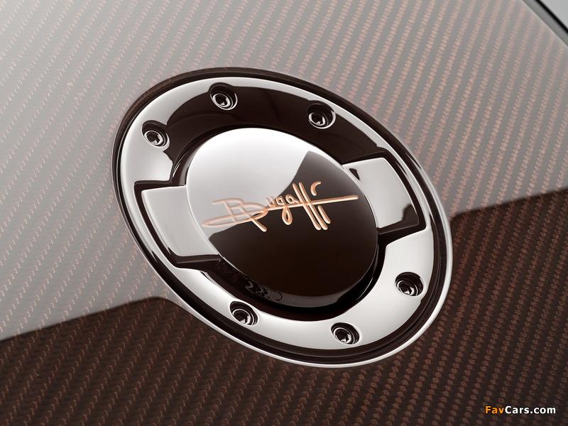 Images of Bugatti Veyron Grand Sport Roadster Vitesse Rembrandt Bugatti 2014 (800 x 600)