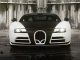 Photos of Mansory Bugatti Veyron Linea Vivere 2014