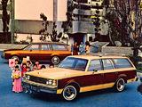 Buick Century Estate Wagon 1979 photos