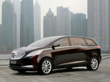 Photos of Buick Business Concept 2009