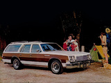 Buick Estate Wagon (4BR35) 1979 images
