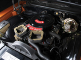 Buick GS 455 Stage 1 (43437) 1971 photos