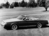 Buick Regal Tiara Convertible by Classic Group 1982 pictures