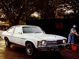 Images of Buick Skylark S/R Coupe 1976