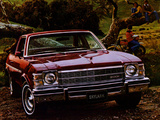 Images of Buick Skylark Coupe 1976
