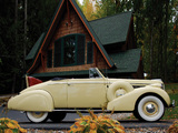 Buick Special Convertible Coupe (38-46C) 1938 pictures