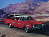 Buick Sport Wagon Custom 1964 images