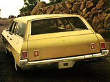 Chevrolet Brookwood 1969 photos