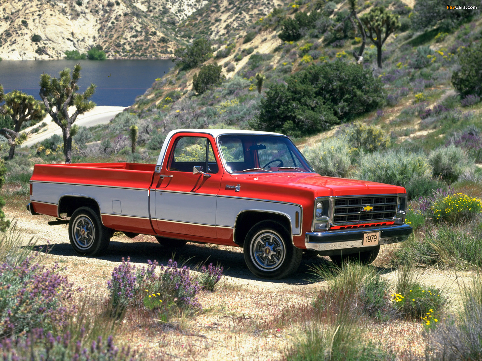 New Chevy Trucks >> Chevrolet 20 Silverado Fleetside 1979 pictures (1600x1200)