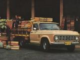 Chevrolet D-10 1979 images