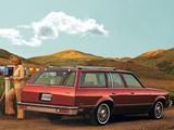Chevrolet Malibu Station Wagon 1979 photos