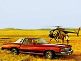 Images of Chevrolet Monte Carlo Landau Coupe 1975