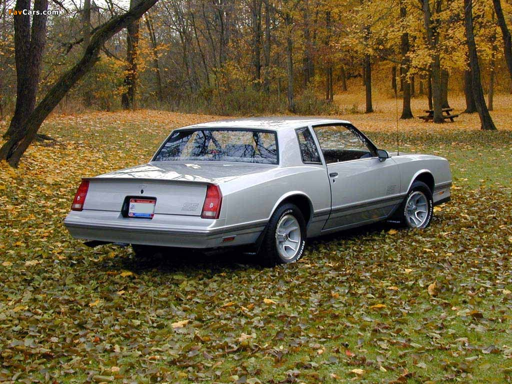 88 Monte Carlo >> Images Of Chevrolet Monte Carlo Ss 1986 88
