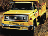 Pictures of Chevrolet C60 Dump Truck 1979
