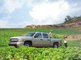 Chevrolet Silverado Crew Cab 2007–13 images