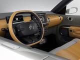 Citroën Cactus Concept 2013 pictures