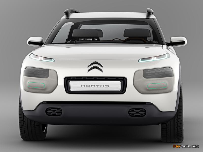 Citroën Cactus Concept 2013 wallpapers (800 x 600)