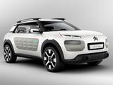 Citroën Cactus Concept 2013 wallpapers