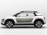 Images of Citroën Cactus Concept 2013
