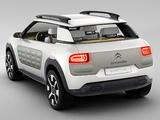 Photos of Citroën Cactus Concept 2013