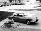 Citroën DS 19 1955–68 images