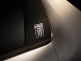 Citroën DS3 World Paris 2013 images