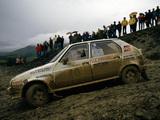 Citroën Visa 1000 Pistes Rally Car 1983–86 pictures