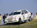 Photos of Citroën Visa 1000 Pistes Rally Car 1983–86