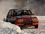 Pictures of Citroën Visa 1000 Pistes Rally Car 1983–86