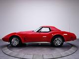 Pictures of Corvette Stingray Convertible (C3) 1974–75