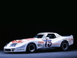 Pictures of Greenwood Corvette IMSA Road Racing GT (C3) 1974–75